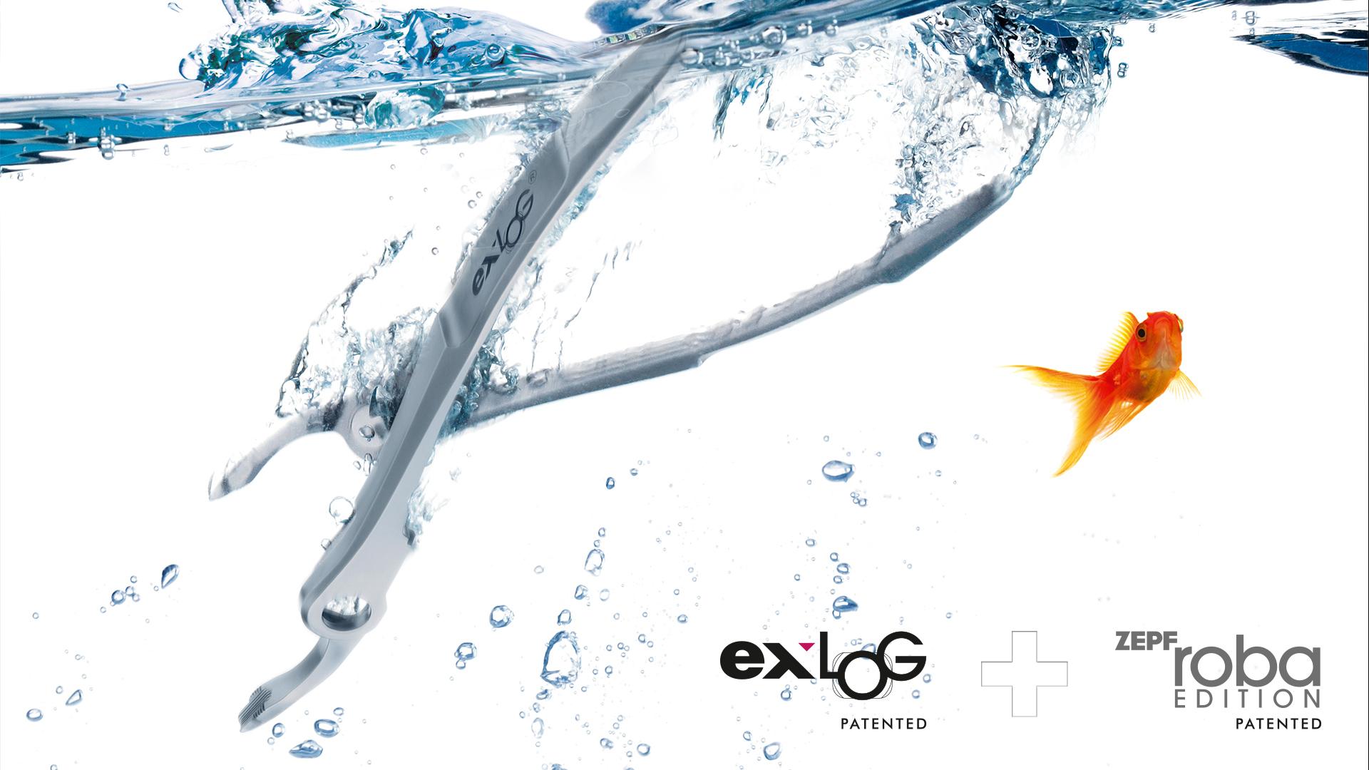 exlog-roba-zepf